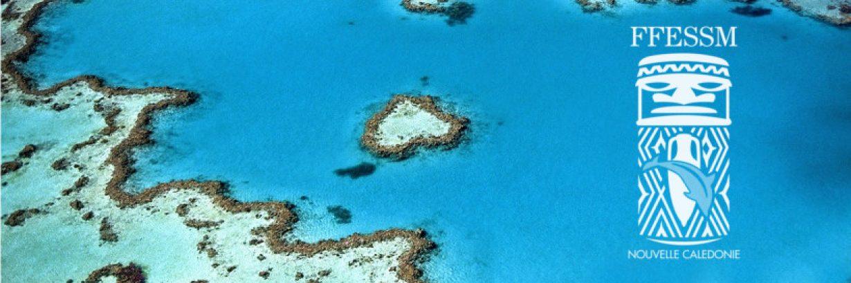 Fédération Française d'Études et de Sports Sous-marins – Nouvelle-Calédonie